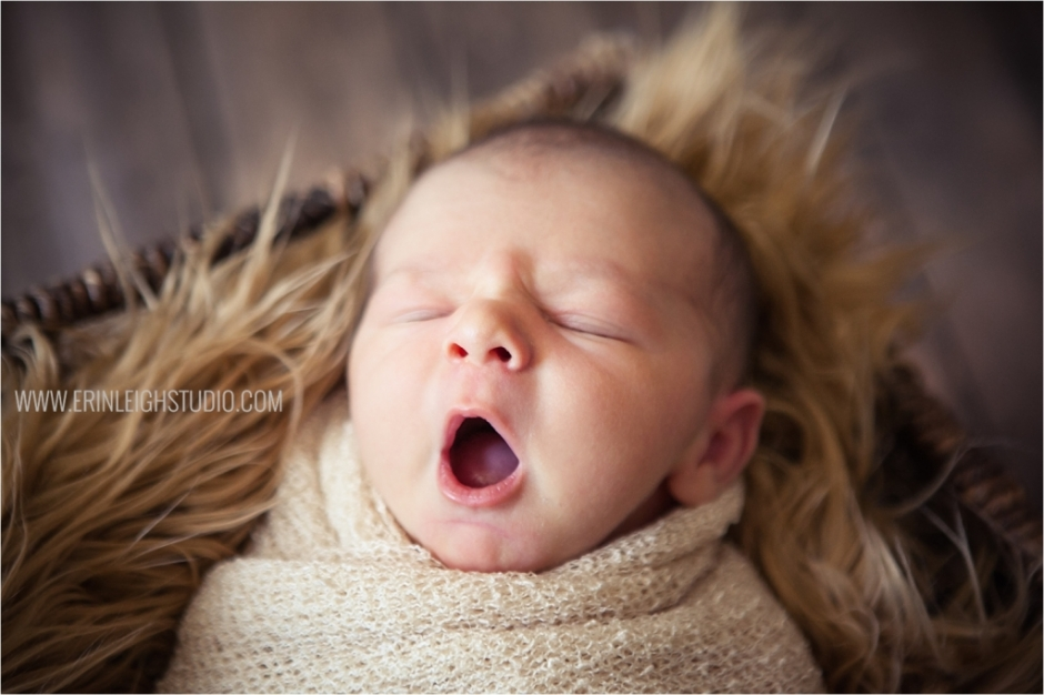 Olathe Lifestyle & Posed Newborn Photography