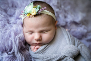 Olathe Lifestyle Newborn Photographer
